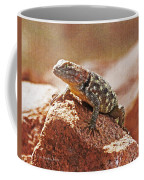 Spiny Swift Looks Over Its Domain Coffee Mug