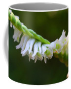 Spiral Ladies' Tresses Coffee Mug
