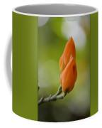 Spirit Of Spring Coffee Mug