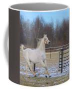 Spirited Horse Coffee Mug