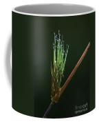 Spiritualism In Nature... Coffee Mug