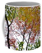 Splash Of Autumn Colors Coffee Mug