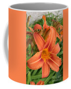 Splendid Day Lily Coffee Mug