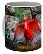 Splish Splash - Red Ibis Coffee Mug