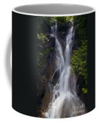 Split Top Falls Coffee Mug