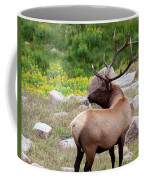 Spoiling For A Fight Coffee Mug