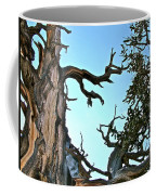 Spooky Bristlecone Pine At Spectra Point On Ramparts Trail In Cedar Breaks National Monument-utah  Coffee Mug
