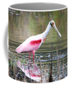 Spoonbill In The Pond Coffee Mug