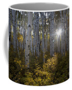 Spot Of Sun Coffee Mug by Jeff Kolker