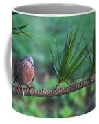 Spotted Dove Coffee Mug