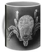 Spotted Fever Tick Coffee Mug
