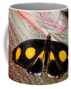 Spotted Grecian Shoemaker Butterfly Coffee Mug
