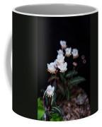 Spotted Wintergreen 5 Coffee Mug
