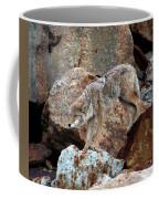 Spotting Prey Coffee Mug