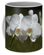 Spray Of Beautiful White Orchids Coffee Mug