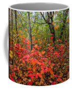 Spray Of Scarlet Coffee Mug