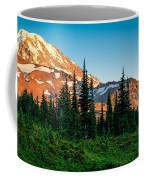 Spray Park Panorama Coffee Mug