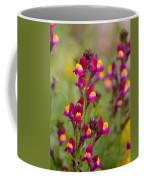 Spring 2013 Coffee Mug