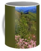 Spring Along The Blue Ridge Coffee Mug