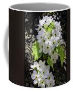 Spring Apple Blossoms Coffee Mug