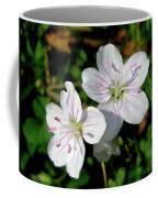 Spring Beauty Wildflowers - Claytonia Virginica Coffee Mug