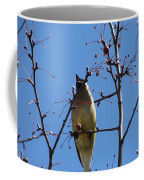 Spring Bird Singing Coffee Mug