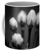 Spring Blooms 6703 Coffee Mug