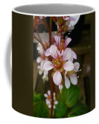 Spring Blooms Of 2013 D Coffee Mug