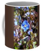 Spring Blooms Of 2013 F Coffee Mug