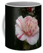 Spring Blooms Of 2013 G Coffee Mug