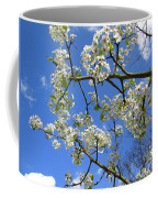 Spring Blossoms 2014 Coffee Mug