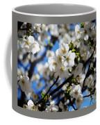 Spring Blossoms, Baltimore Coffee Mug