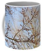 Spring Bound Coffee Mug