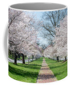 Spring Cherry Trees Coffee Mug