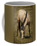 Spring Creek Basin Wild Horse Grazing Coffee Mug