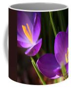 Spring Crocus Pair  Coffee Mug