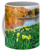 Spring Daffodils At Laurel Ridge-connecticut  Coffee Mug