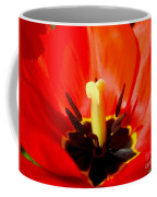 Red Tulip In Spring Coffee Mug