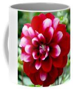 Red Spring Flower Coffee Mug