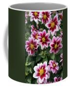Spring Flowers 4 Coffee Mug