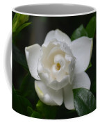 Spring Gardenia 2013 Coffee Mug