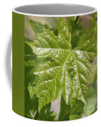 Spring Grape Leaf Coffee Mug