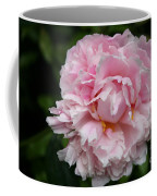 Spring In Pink Coffee Mug