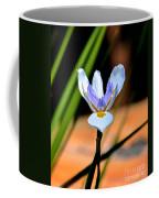 Spring Iris Coffee Mug