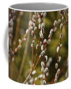 Spring Is Springing Coffee Mug by Thomas Young
