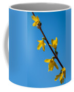 Spring Lights Coffee Mug