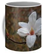Spring Magnolia Coffee Mug