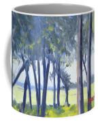 Spring Marsh From Deerfield Road Coffee Mug