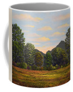 Spring Meadow At Sutter Buttes Coffee Mug