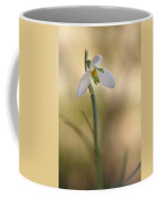 Spring Messenger Coffee Mug